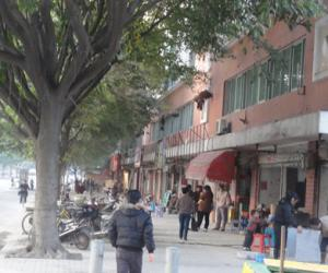 白马路上沿街小店